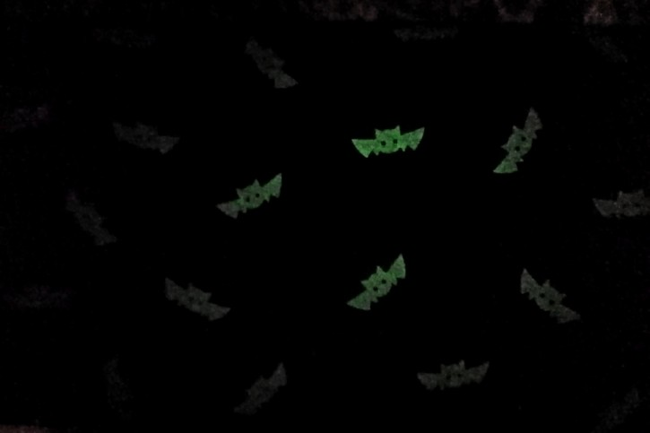 Glow in the Dark Fledermaus